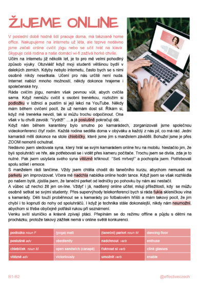 Download article as PDF